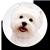 :iconmaddog222: