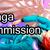 :iconmangagroup-donation: