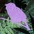 :iconmapleflare: