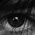 :iconmarauder-padfoot: