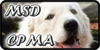 :iconmaremma-sheepdogs: