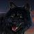 :iconmarianwolfart: