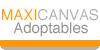 :iconmaxicanvas-group: