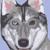 :iconmaxjwolf: