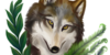 :iconmexican-gray-wolf: