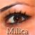 :iconmilica:
