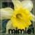 :iconmimie1: