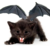 :iconminibatkitty: