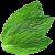 :iconmint-juice: