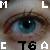 :iconmlca76: