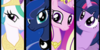 :iconmlp-princess-team: