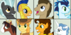 :iconmlp-the-stallion-6:
