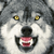 :iconmoon-lightwolf: