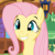:iconmsfluttershy: