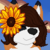:iconmystery-fox: