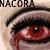 :iconnacora: