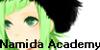 :iconnamida-academy: