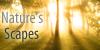 :iconnaturesscapes: