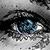 :iconnautalusx: