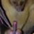 :iconnigger-the-edgehog: