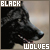 :iconnight-blackravenwolf: