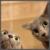 :iconniklon9141: