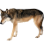:iconnipple-adopts: