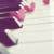 :iconnmusicalbunyc: