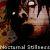 :iconnocturnal-stillness: