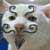 :iconnotseriouscat: