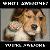 :iconnuttman117: