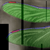 :icono-dragonfly-o:
