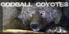 :iconoddball-coyotes: