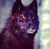 :iconomega-wolf-crimson: