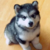 :iconone-cute-husky: