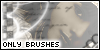 :icononlybrushes: