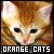 :iconorange-cats: