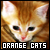 :iconorange-cats: