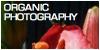 :iconorganic-photography: