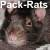 :iconpack-rats: