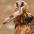 :iconpaleosaurian: