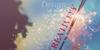 :iconpassion-designers: