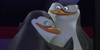 :iconpenguin-slash-yaio: