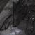 :iconperkelee: