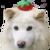 :iconperodog2: