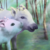 :iconpick-the-pig: