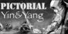 :iconpictorial-yin-n-yang: