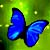 :iconpink-butterflies-08: