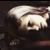:iconpinkie-pie297: