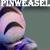 :iconpinweasel: